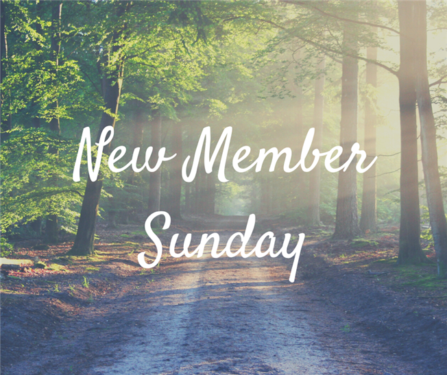 New Member Sunday - November 17
